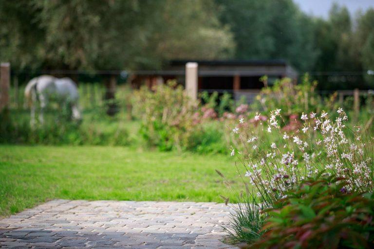 BP Tuinservice tuin aanleg 2